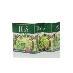Чай зеленый 2*20*1,8г ТМ Tess (Тесс) Ginger mojito