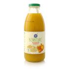 Нектар тыквенный Pumkin nectar TM Benature (Бенатуре)