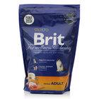 Корм полнорационный сбалансированный для взрослых кошек, с курицей ТМ Brit (Брит)