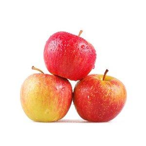 Яблоки Роял Гала (сетка)